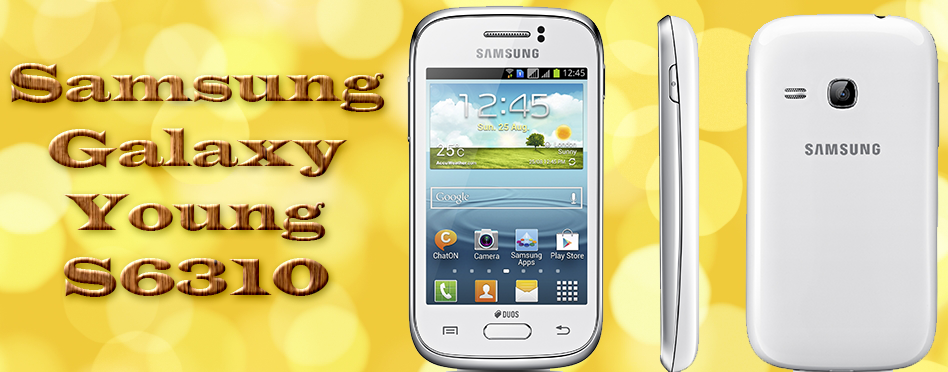 Samsung Young S6310 Price