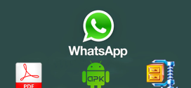 Share PDF, apk and zip files on WhatsApp
